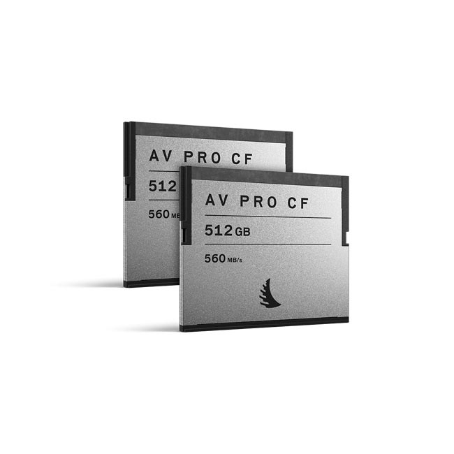Angelbird AVpro CF 512GB (2-Pack)