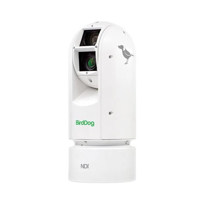 BirdDog Eyes A300 IP67 Extreme Weatherproof Full NDI PTZ Camera with Sony Sensor & SDI (White)