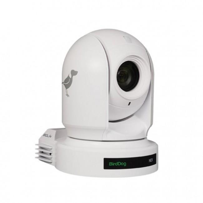 BirdDog Eyes P200 1080P Full NDI PTZ Camera with Sony Sensor & HDMI/3G-SDI (White)