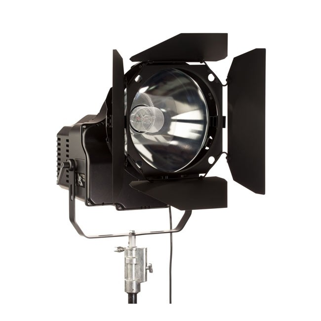 Hive Lighting Wasp 1000 Plasma Par Light with Remote Ballast (220V Ballast)