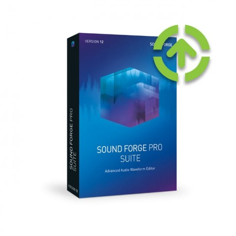 Magix Sound Forge Pro 12 Suite (Upgrade from older Standard and Pro Version) ESD